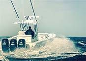 Mercury Ibex Tampa