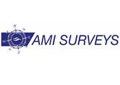 AMI Surveys