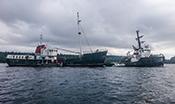 Viki Lyne Boat