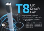 T8 Bulb