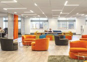 Workplace Lighting as a Dynamic Design Element