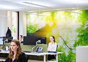 Lighting Supports Healthy Offices
