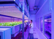 LED and HID Horticultural Luminaires