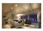 Standard LED Lumeina Downlight