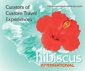 Hibiscus International